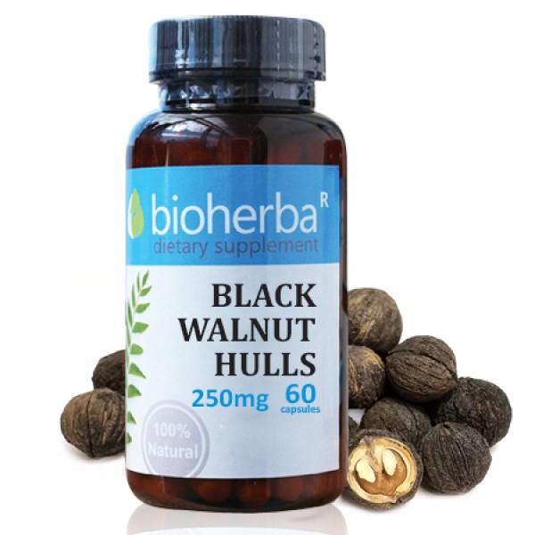 Люспи от черен орех на капсули 250 мг. 60 капсули